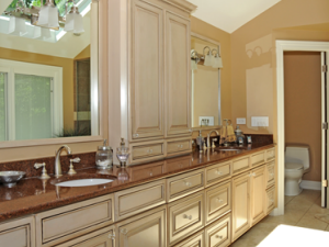 Bathroom Remodel In Lincolnshire IL Regency Home Remodeling - Bathroom remodel program free